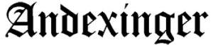 Andexinger company logo