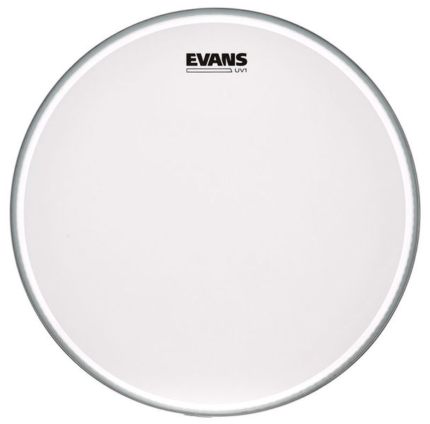 "Evans 16"" UV1 Coated Bass"
