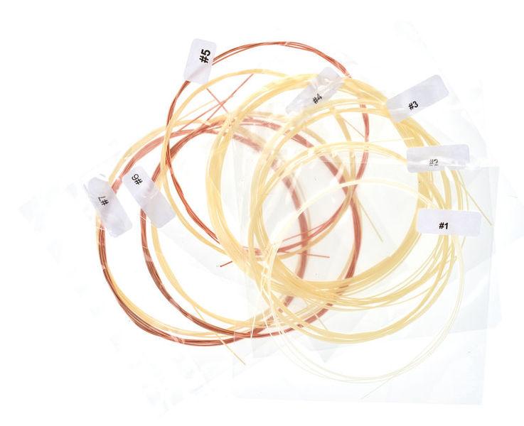 Aquila Renaissance Lute Strings 7C