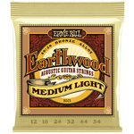 Ernie Ball 2003 Earthwood Bronze