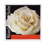 Pirastro Wondertone E Violin 4/4 Solo