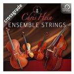 Best Service Chris Hein Ensemble Strings CG