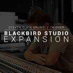 Slate Digital SSD5 Exp Blackbird Studio Drum