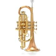 Carol Brass CCR-3880-GSS-Bb-SLB B-Stock