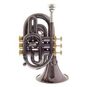 Carol Brass CPT-3000-GLS-Bb-BG Blackhawk