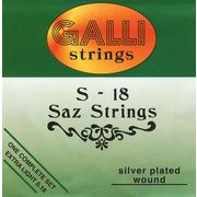 Galli Strings S018 Saz Strings Set