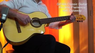 Gewa Pro Arte Flamenco YW E-A