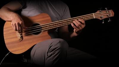 Gold Tone Micro Bass 23 Fretless